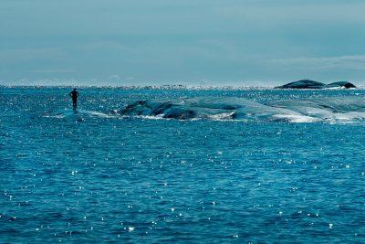 Bader ved Krøkle