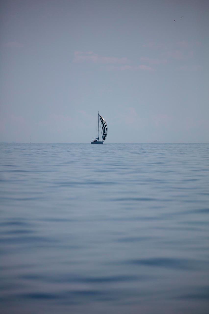 Seilbåt hav