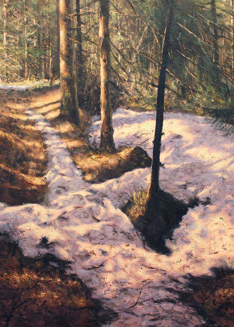 Morten Halvorsen skogbunn